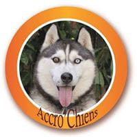 Accro'Chiens - 85260 La Copechagnière