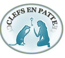 Clé en Pattes à Saint Aubin de Baubigné, , à 5 min de Mauléon